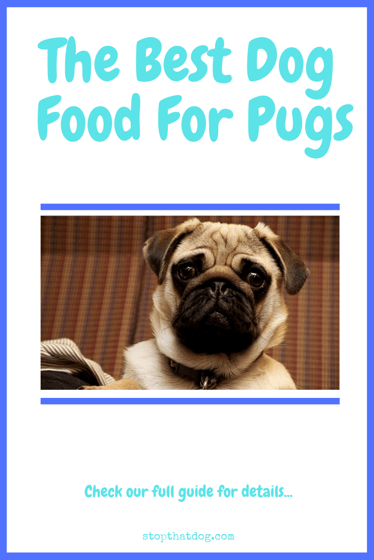 The Best Dog Food For Pugs Stop That Dog
