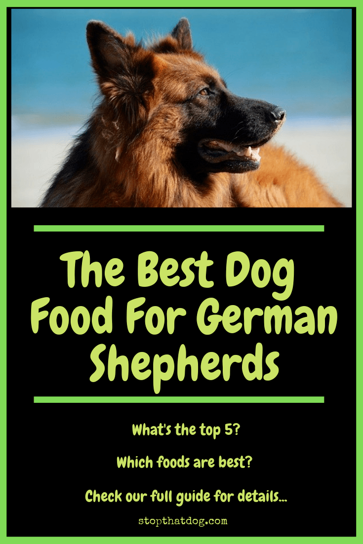 dog food for german shepherd puppy the best dog food for german shepherds stop that dog 6735