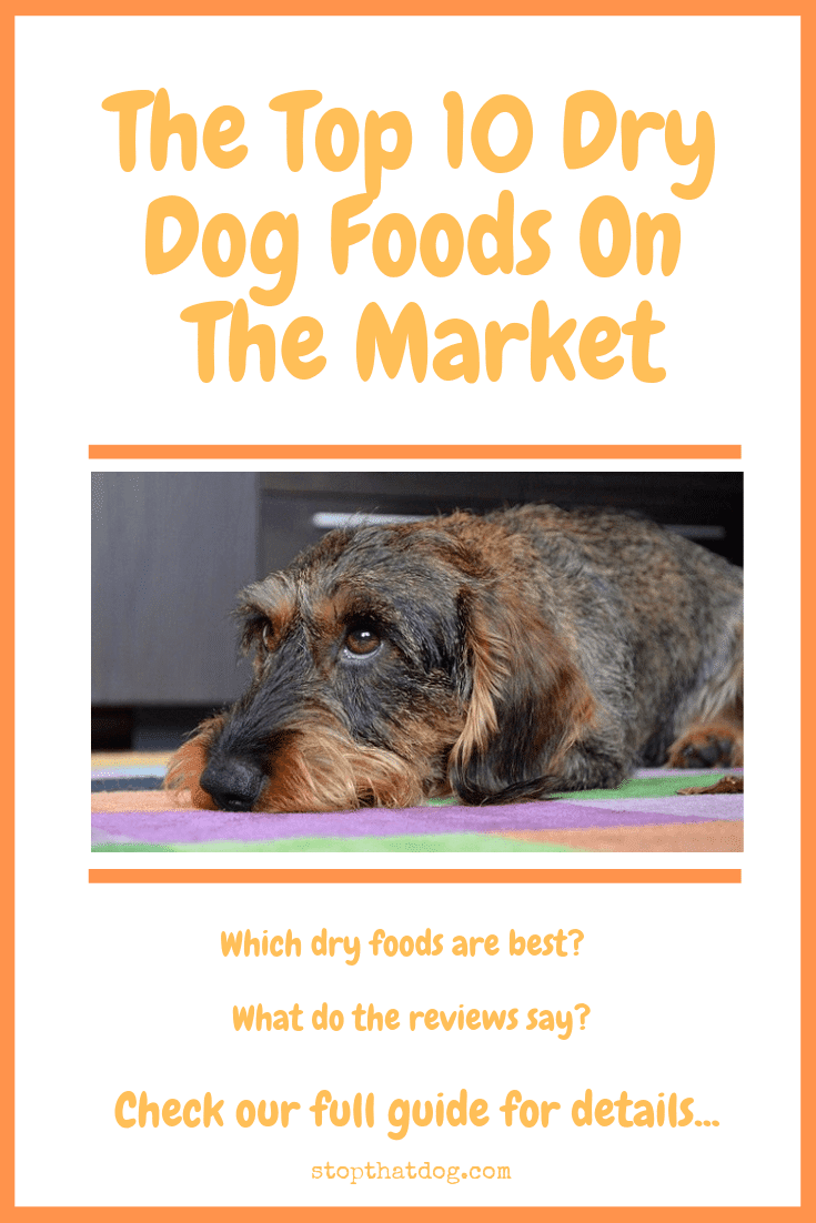 The Top 10 Dry Dog Foods On The Market Stop That Dog