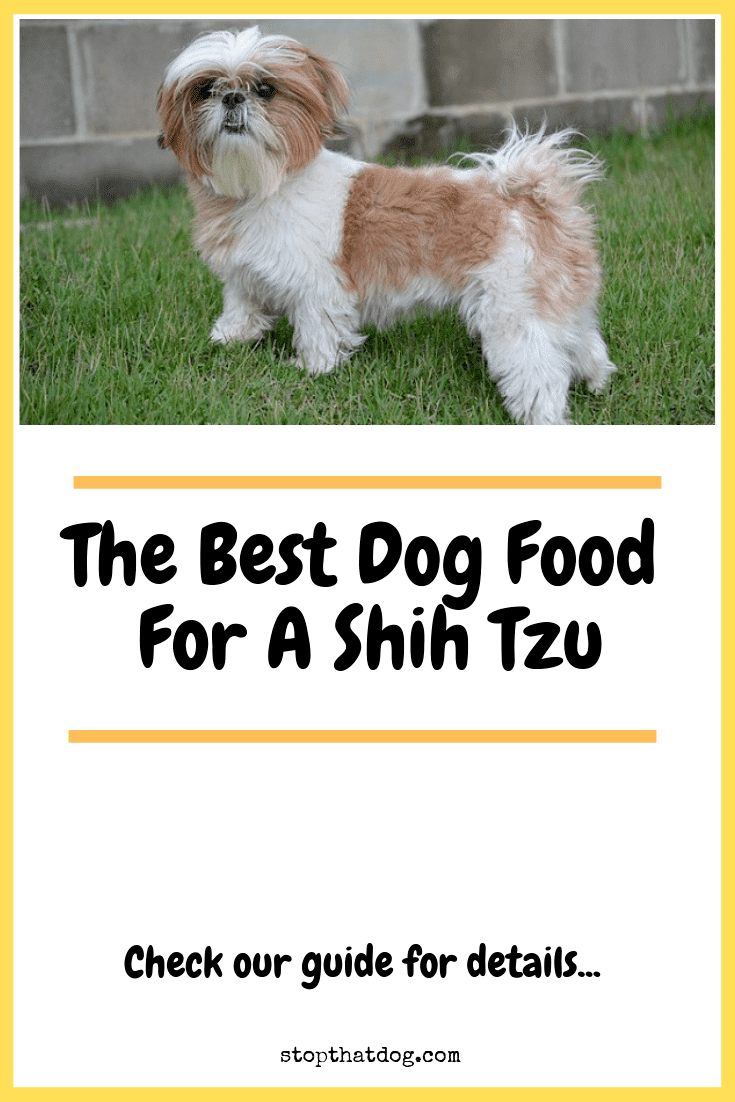 The Best Dog Food For A Shih Tzu Stop That Dog