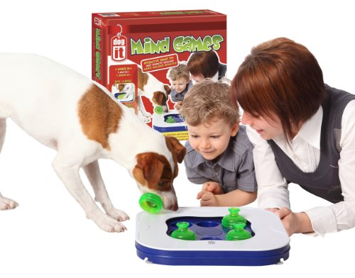 What Are The Best Interactive Dog Toys? Our Complete Guide 24