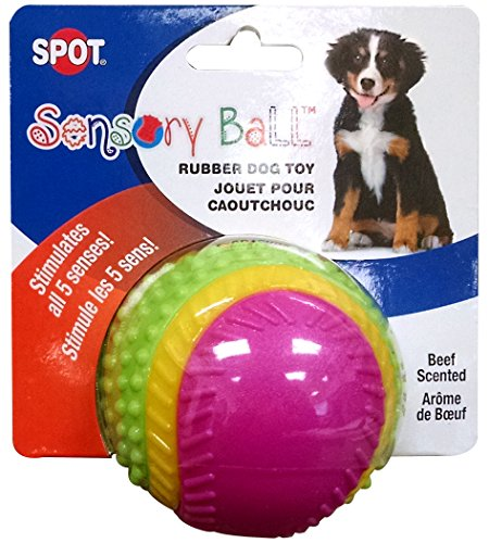 What Are The Best Interactive Dog Toys? Our Complete Guide 11