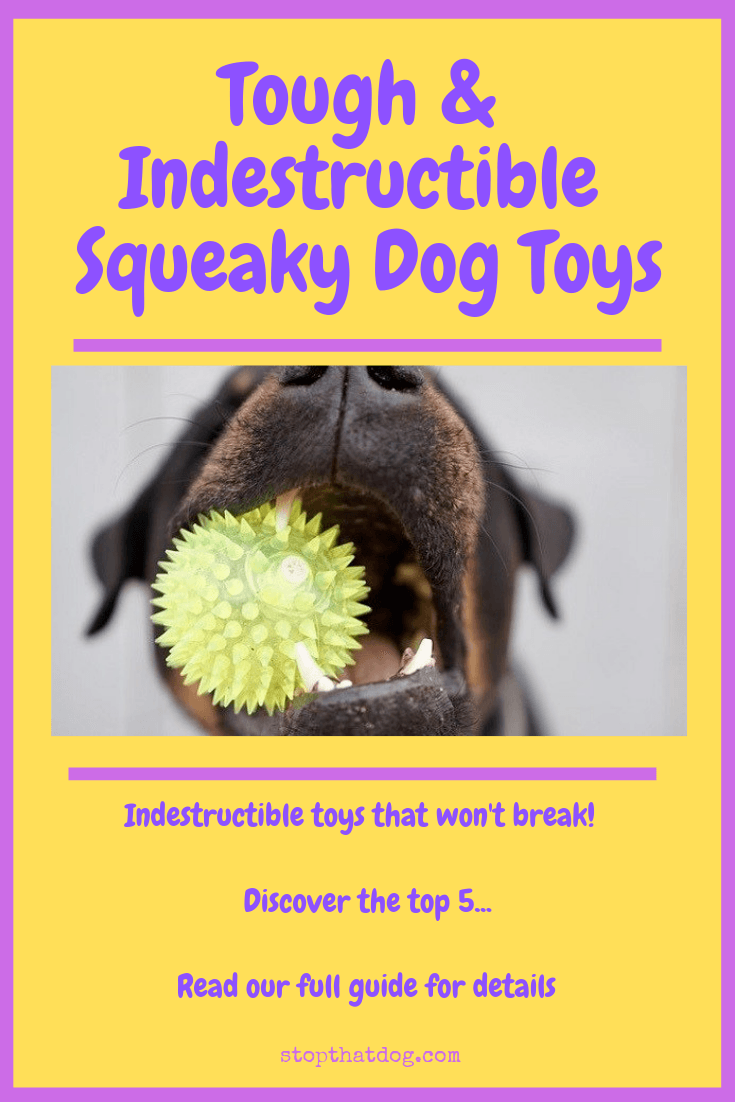 Tough & Indestructible Squeaky Dog Toys - Stop That Dog!