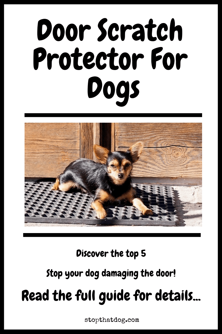 Door Scratch Protector For Dogs The Best Solutions