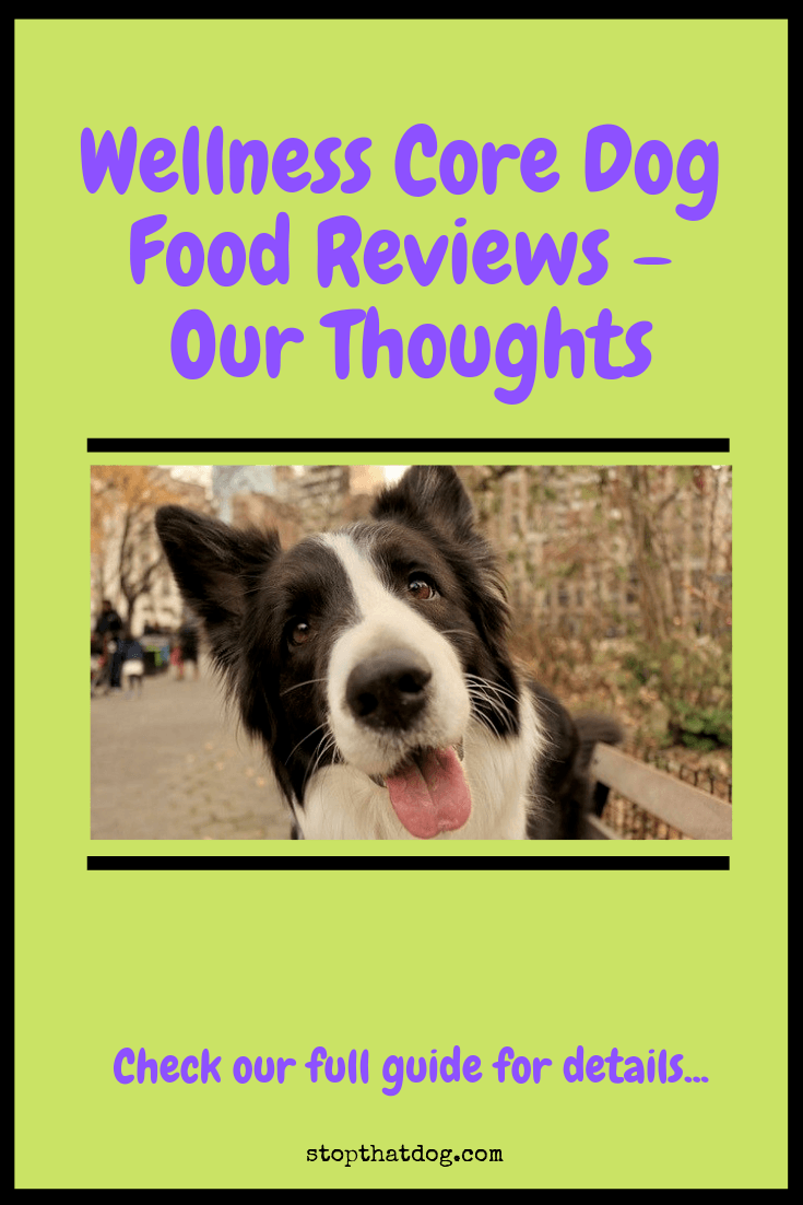 Wellness Core Dog Food Reviews Our Thoughts Stop That Dog