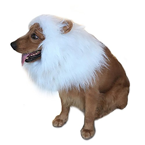 Where Can I Find A Lion Mane Dog Costume? 9