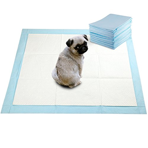 What's The Best Puppy Pee & Potty Training Pad? (+ Floor Trays & Holders!) 9
