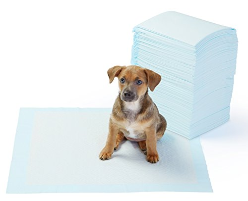 What's The Best Puppy Pee & Potty Training Pad? (+ Floor Trays & Holders!) 6