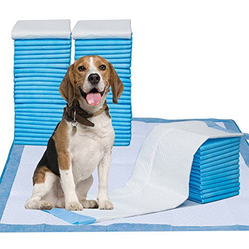 What's The Best Puppy Pee & Potty Training Pad? (+ Floor Trays & Holders!) 12